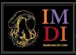 IMDI – republished book on mushroom dyeing